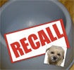 Feeding Your Dog: What to Consider Beyond Dog Food Recall?
