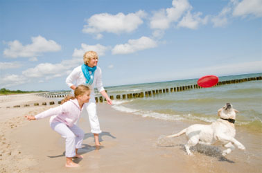 Looking for Pet Friendly Vacation Rentals and Fun Family Activities in Fort Myers?