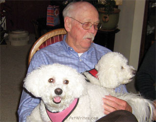 How Do They Feed These Two Small Dog Rescue Bichon Frisés?