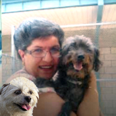 Why Choose Pet Rescue Adoption? Gina with Fritz, Precious Too