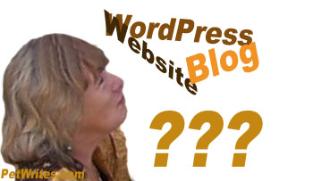 Business Planning Process - Which is Better, Static Website or WordPress Blog?
