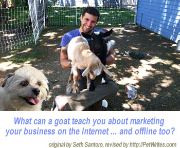 What Can Goats Teach About Internet Business Marketing?