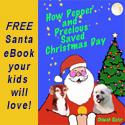 Santa eBook Banner 125x125px