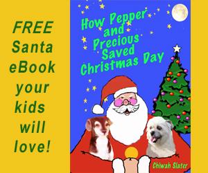 Santa eBook Banner 300x250px