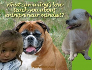 Entrepreneur Mindse- What Can a Dog's Love Teach You About It